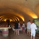 Cave - a visit at Spring Mountain Vineyards