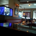 Downstairs dinning room with fish tank