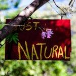 Just Natural