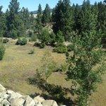 Foto de Oxford Suites Spokane Valley