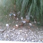 Vue sur le depot d'ordure sous la fenetre