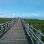 Entrance to the beach- wooden bridge