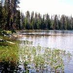 Horse ride into nearby Lemish Lake
