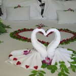 The decoration for honeymoon couples