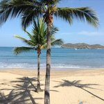 Ixtapa island and palm trees