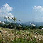 Panorama. Il Monte Amiata