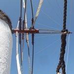 Boni windmill
