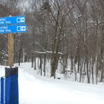 Ski home trail