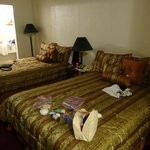 Twin double room - very spacious & clean