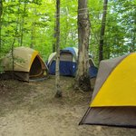 Roomy sites to pitch a couple of tents