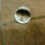Türstopper, privatbadezimmer