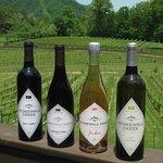 Four of our five wines:  Malbec blend, Cabernet Franc, Rosé & Petit Manseng.