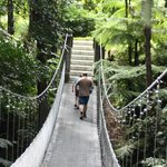 bridge to pool