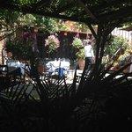 Taverna Cretekou Foto