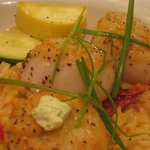 pan-seares Sea Scallops