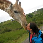 I kissed a giraffe, how cool is that?! A prince can not beat that ;-)