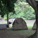 Our tent with the river and an ostrich on the background