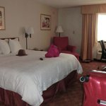 Room 535