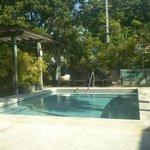 Merlin Pool