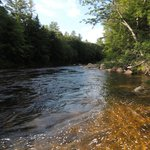View of the Saco River