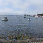 Along the Shining Sea Bikeway