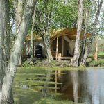 Oakwood Escape Glamping
