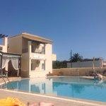 Palmar pool