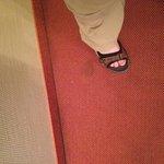 Stain on carpet. 4 star?