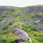 Signal Hill Hike-1