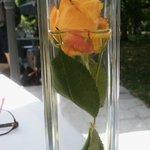 petit bouquet de fleur sur la table