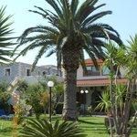 The gardens at Zervas