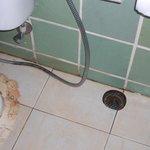 Leaking Toilet