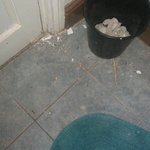 More paint flakes and general dirt around the bathroom floor.  At least this bin was emptied.