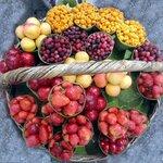 Kumaoni Local Fruits