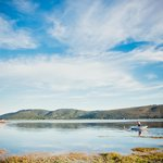Knysna's hidden little treasure