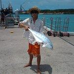 1metre queenfish