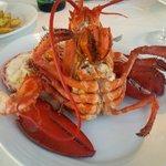 """Lobster at """"88"""""""