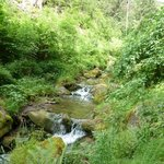 A beautiful stream within walking distance from Hotel.