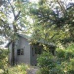 il cottage nel bosco