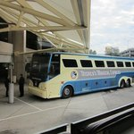 Magical Express-Free Airport Transportation