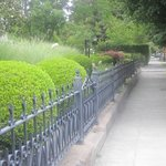 beautiful Iron Fence and Gates