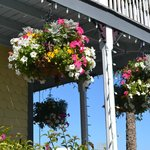 Hanging baskets greet you on your baycation.
