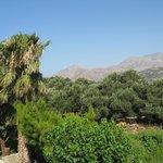 Blick in den Garten und die umliegenden Berge