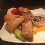 Lovely stuffed spring rolls with a tasty hoi-sin sauce