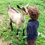 Love <3 on the farm!