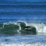 Bazils Hostel Surf