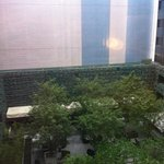 view on the courtyard from the room