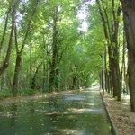 Bike path in Sokolniki