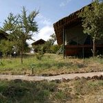 Photo de Ngorongoro Wildcamp