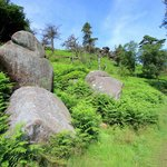 The nearby Roaches